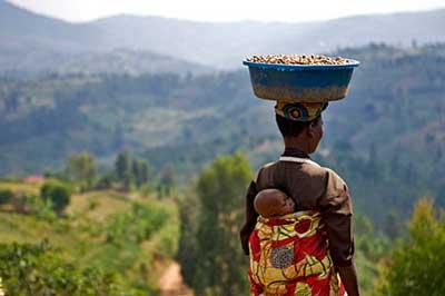 Танзанийский кофе