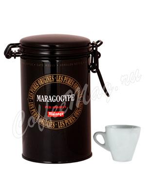 Кофе Malongo молотый Maragogype 250 г