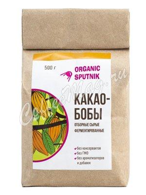 Какао-бобы отборные Ayalma (KB-001)