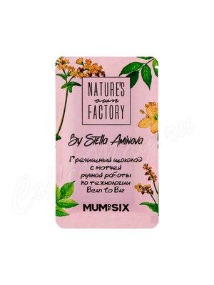 Nature`s own Factory Гречишный шоколад с матчей 20 г  (ручная работа)