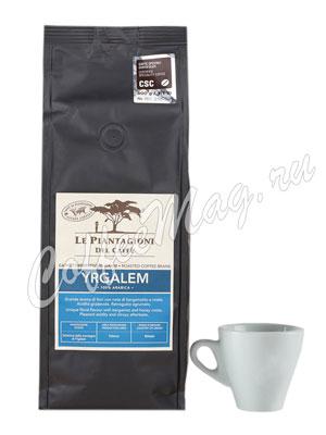 Кофе Le Piantagioni del Caffe (Ле Пьянджиони Дель Каффе) в зернах Yrgalem 500 г