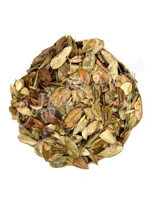 Травяной чай Лист брусники