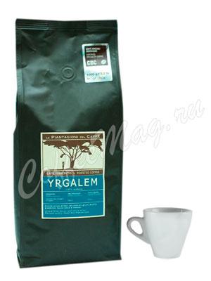 Кофе Le Piantagioni del Caffe (Ле Пьянтаджиони Дель Каффе) в зернах Yrgalem 1 кг