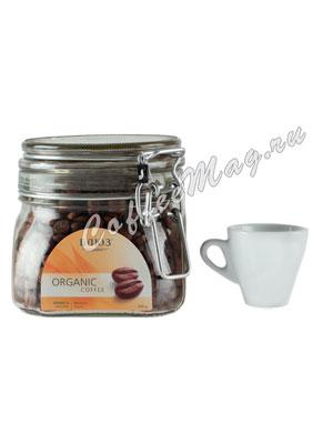 Органический кофе в зернах Mexico Altura 200 гр ст.б.